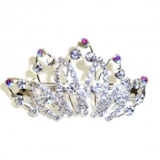 Silver Crown Hair Clip